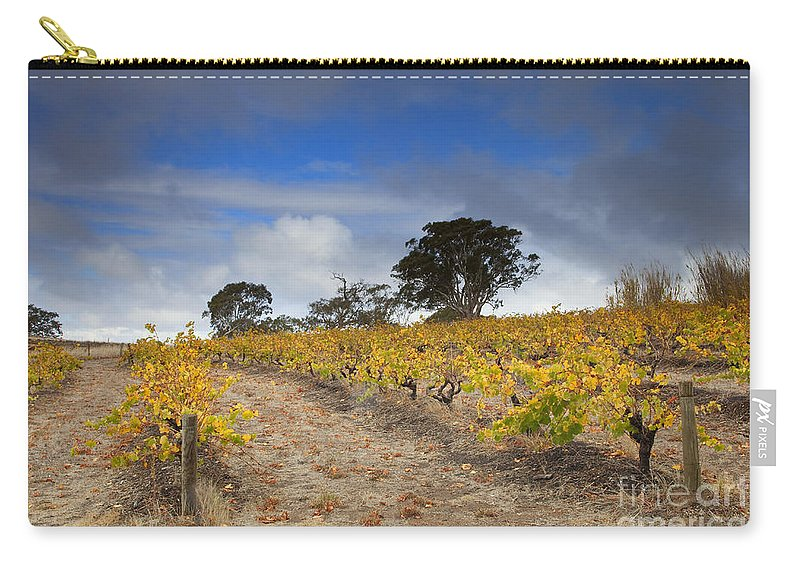 Golden Carry-all Pouch featuring the photograph Golden Vines by Mike Dawson