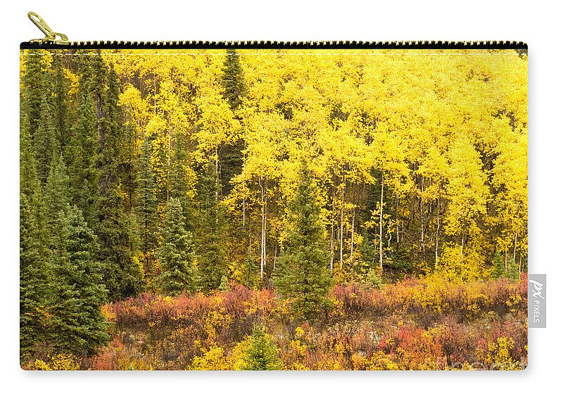 Aspen Carry-all Pouch featuring the photograph Golden Yellow Fall Boreal Forest In Yukon Canada by Stephan Pietzko