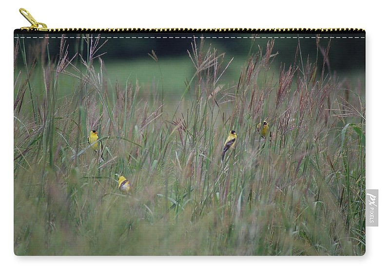 Bird Carry-all Pouch featuring the photograph Goldfinch Party by Susan Patrie
