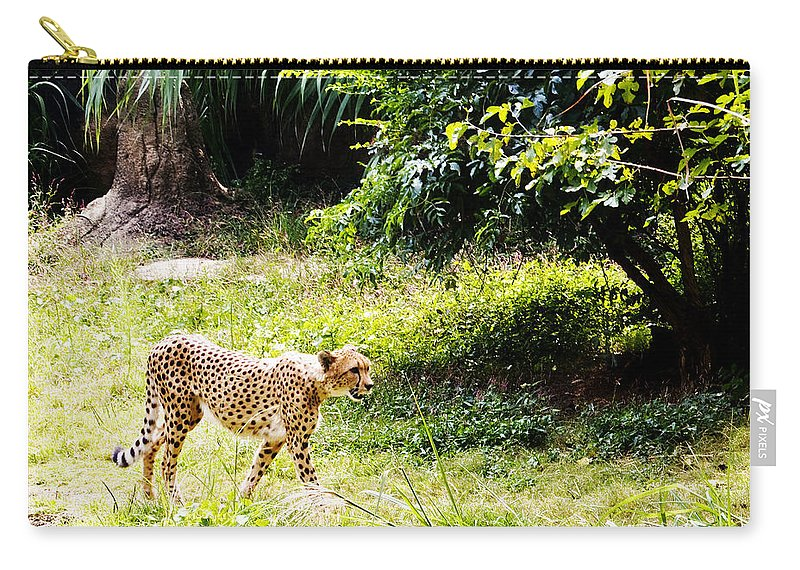 Cheetah Carry-all Pouch featuring the photograph Gone In 3 Seconds 1 by Walter Herrit