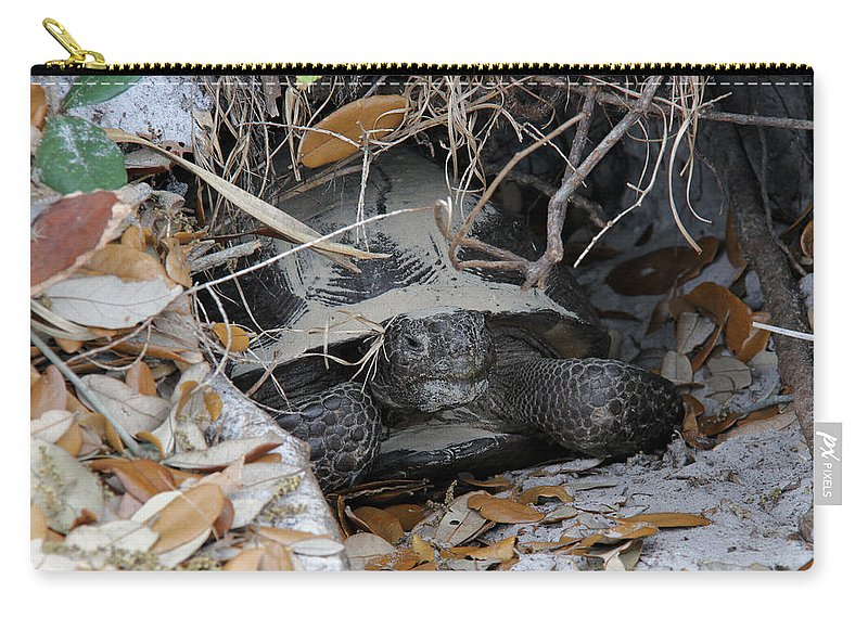 Gopher Tortoise Carry-all Pouch featuring the photograph Gopher Tortoise by Doris Potter