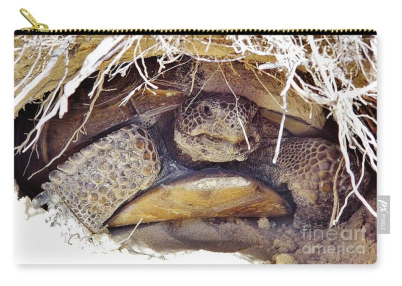Gopher Turtle Carry-all Pouch featuring the photograph Gopher Tortoise by D Hackett