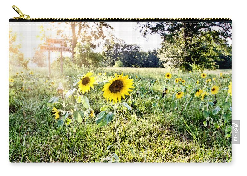 Sunflower Carry-all Pouch featuring the photograph Grace Plantation by Scott Pellegrin