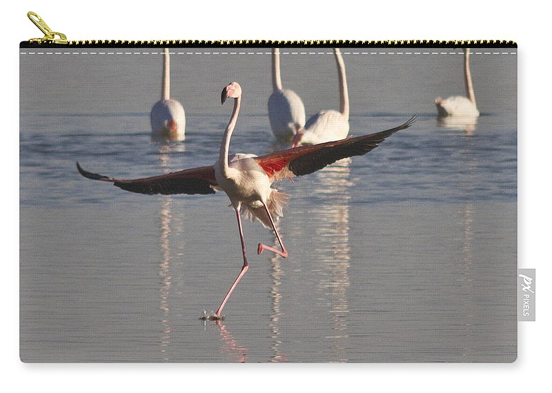 Heiko Carry-all Pouch featuring the photograph Graceful Flamingo Dance by Heiko Koehrer-Wagner