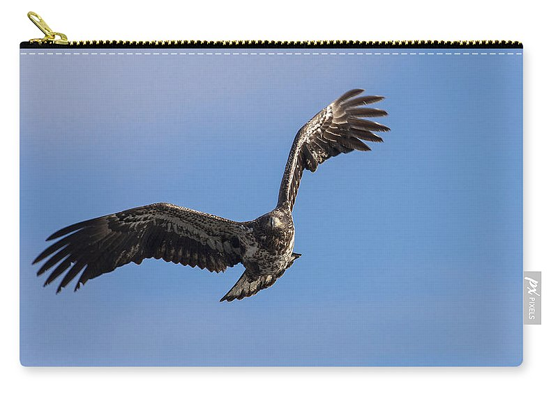 Alaska Carry-all Pouch featuring the photograph Graceful by Jack R Perry