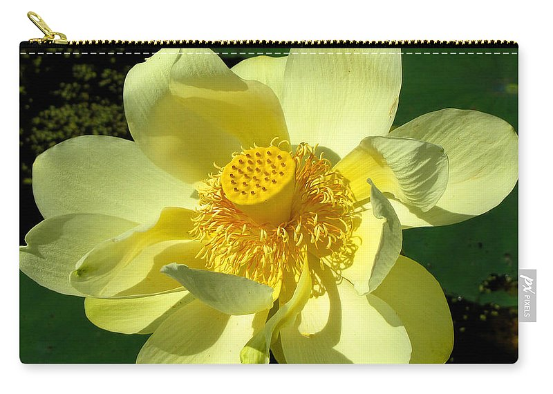 Nature Carry-all Pouch featuring the photograph Grand Opening by John Freidenberg