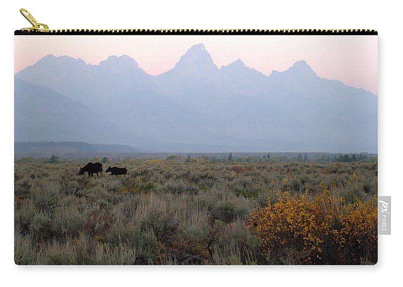 Moose Sunrise At Grand Teton National Park Brian Harig Carry-all Pouch featuring the photograph Grand Teton Moose by Brian Harig