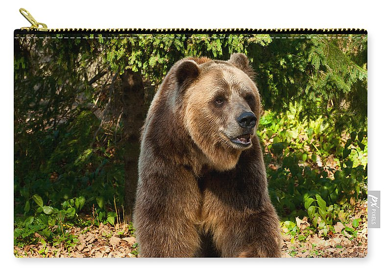 Grizzly Carry-all Pouch featuring the photograph Grandpa Bear by Les Palenik
