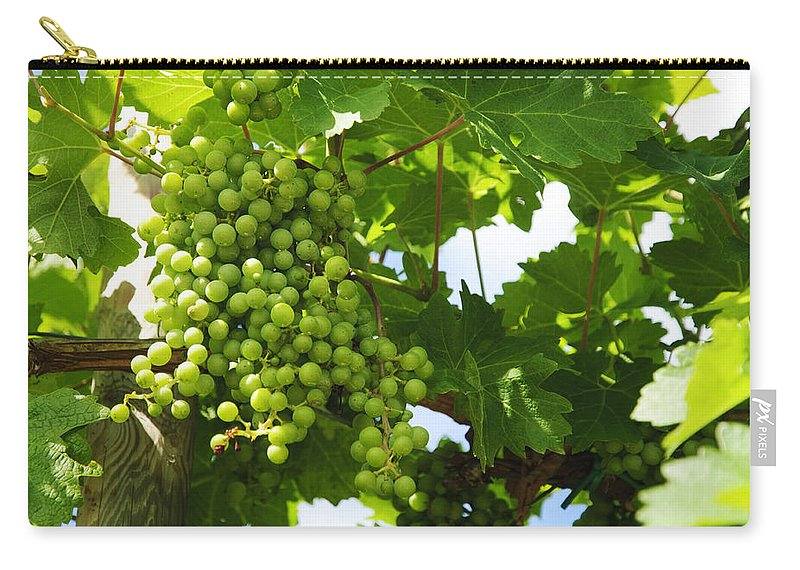 Grape Carry-all Pouch featuring the photograph Grapes In A Vineyard by Chevy Fleet