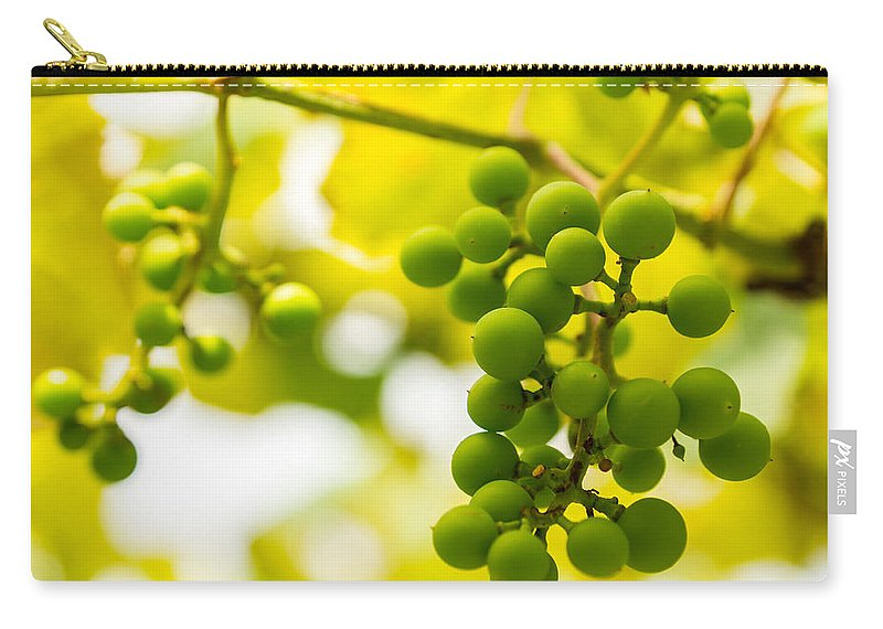 Grape Carry-all Pouch featuring the photograph Grapes On The Vine - Finger Lakes Vineyard by Photographic Arts And Design Studio