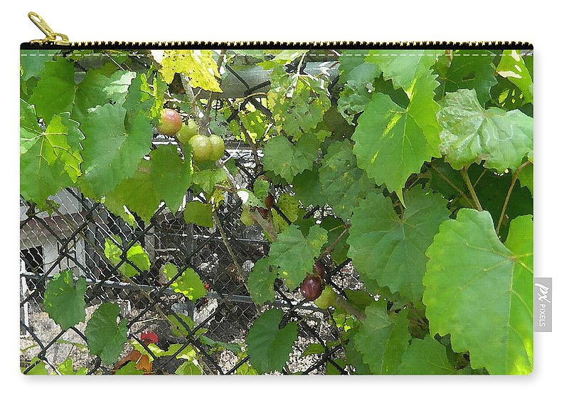 Grapes Carry-all Pouch featuring the painting Grapes On The Vine by George Pedro