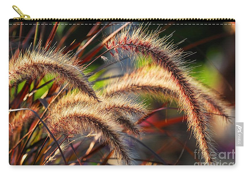 Grass Carry-all Pouch featuring the photograph Grass Ears by Elena Elisseeva