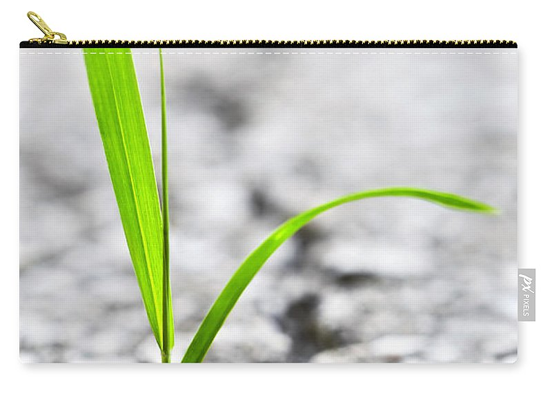 Grass Carry-all Pouch featuring the photograph Grass In Asphalt by Elena Elisseeva