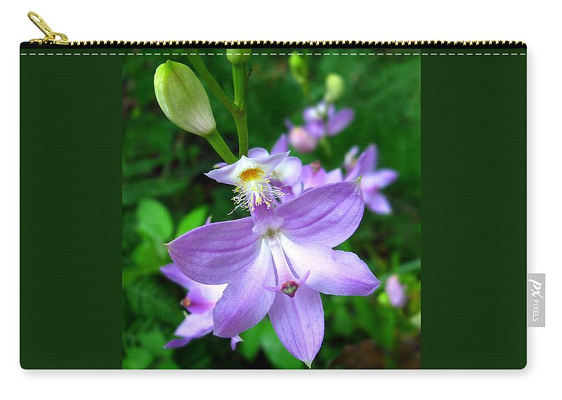 Calopogon Tuberosus Carry-all Pouch featuring the photograph Grass Pink Orchid by William Tanneberger