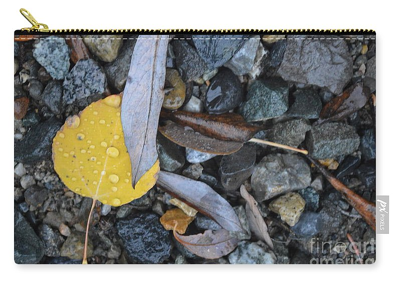 Gravity Carry-all Pouch featuring the photograph Gravity Support Group by Brian Boyle