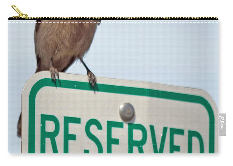 Gray_jay Carry-all Pouch featuring the photograph Gray Jay by Dee Carpenter