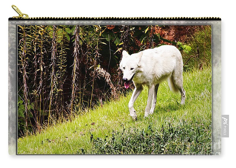 Gray Wolf Carry-all Pouch featuring the photograph Gray Wolf 2 by Walter Herrit