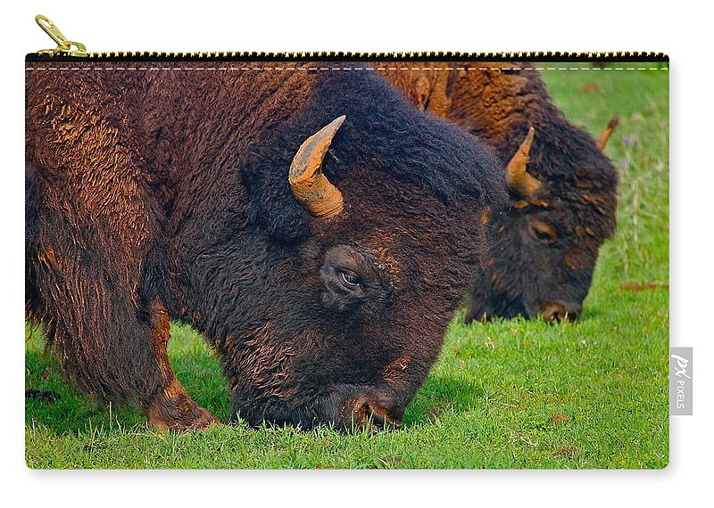 Buffalo Carry-all Pouch featuring the photograph Grazing Buffaloes by Denise Mazzocco