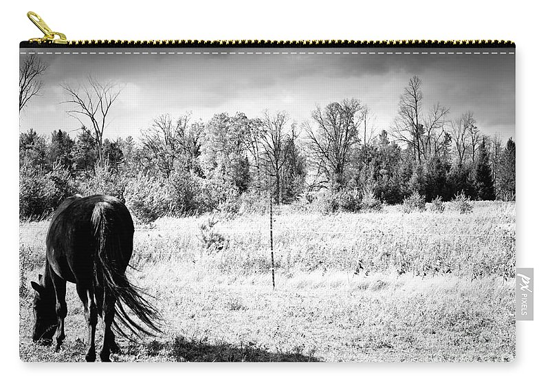 Horses Carry-all Pouch featuring the photograph Grazing by Cheryl Baxter