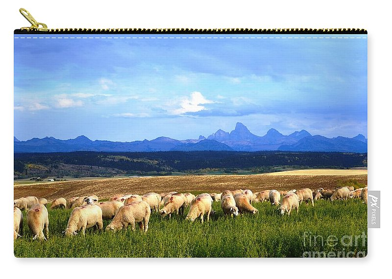Sheep Carry-all Pouch featuring the photograph Grazing by Deanna Cagle