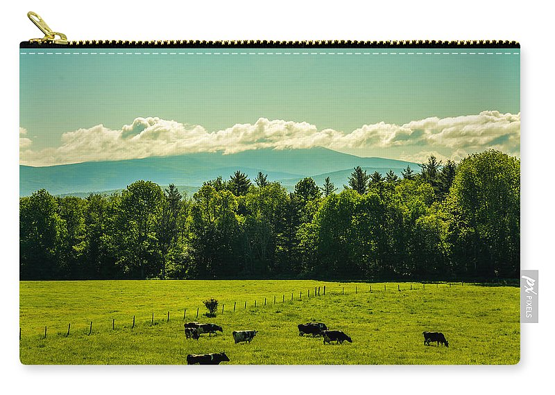 Cows Carry-all Pouch featuring the photograph Grazing Holsteins by Sherman Perry