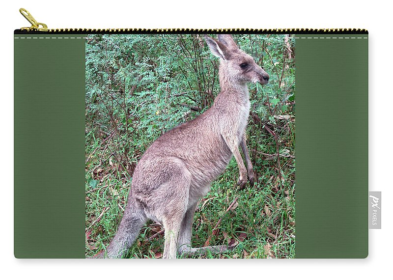 Grazing In The Grass Carry-all Pouch featuring the photograph Grazing In The Grass by Ellen Henneke