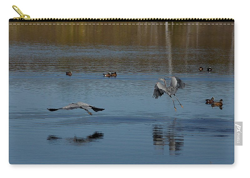 Animals Carry-all Pouch featuring the photograph Great Blue Dance by Ernie Echols