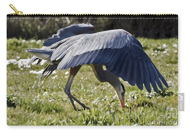 Kate Brown Carry-all Pouch featuring the photograph Great Blue Dining Out by Kate Brown