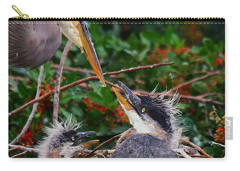 Great Blue Heron Carry-all Pouch featuring the photograph Great Blue Heron Family by Barbara Bowen