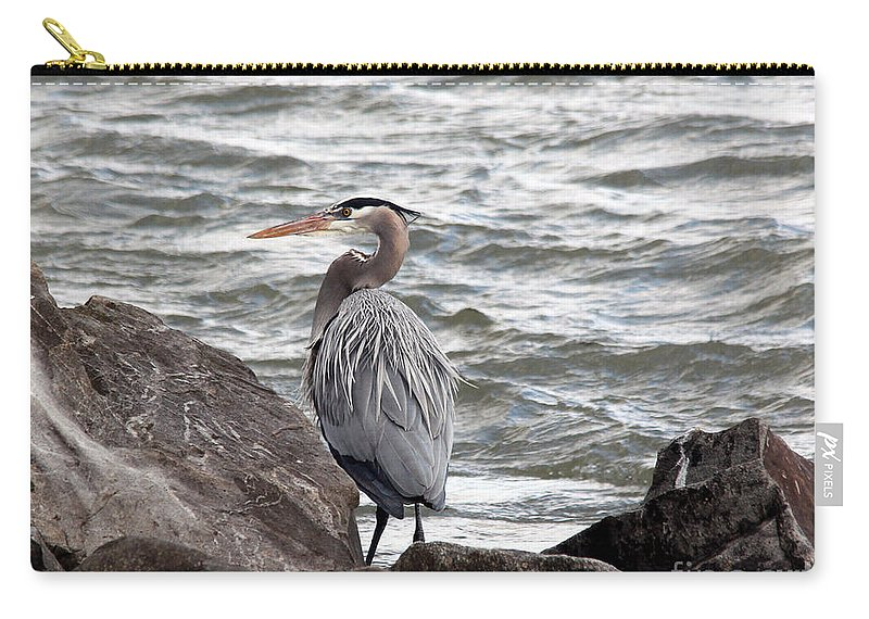 Great Blue Heron Carry-all Pouch featuring the photograph Great Blue Heron by Trina Ansel