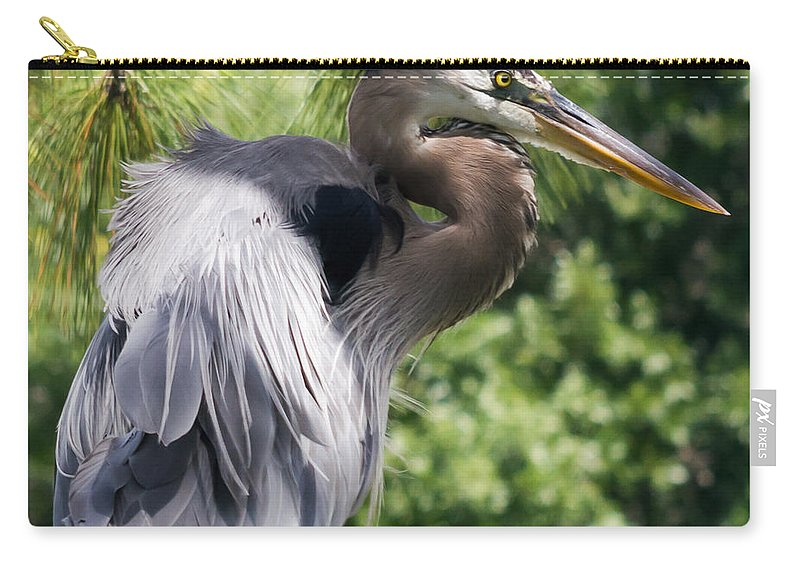susan Molnar Carry-all Pouch featuring the photograph Great Blue Heron Vi by Susan Molnar