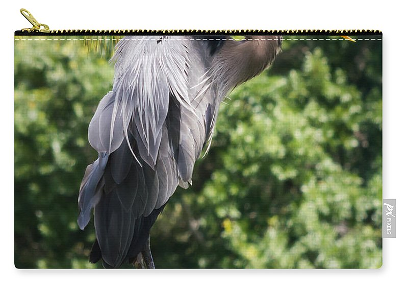 susan Molnar Carry-all Pouch featuring the photograph Great Blue Heron Vii by Susan Molnar