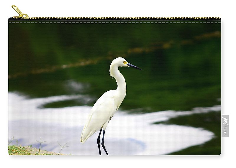 Birds Carry-all Pouch featuring the photograph Great Egret by Debra Forand