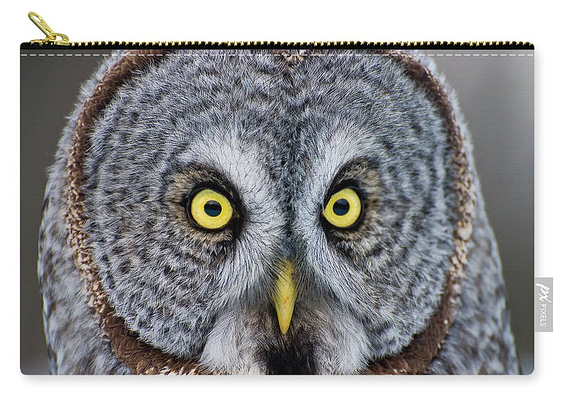 Animal Themes Carry-all Pouch featuring the photograph Great Gray Owl by Copyright Michael Cummings
