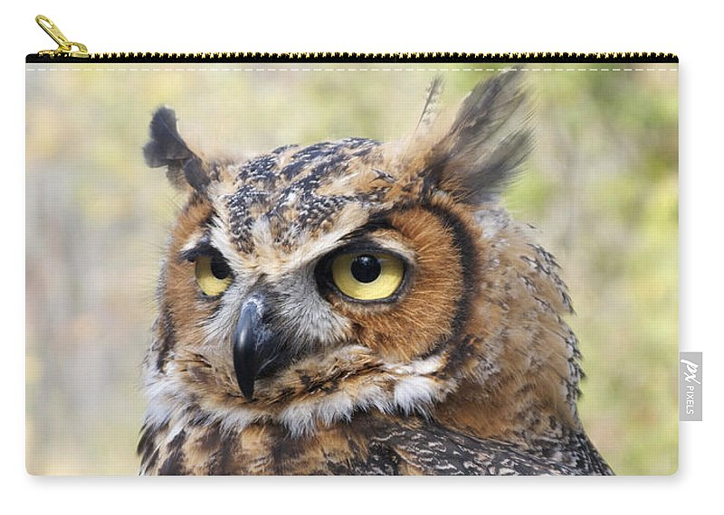 Owl Carry-all Pouch featuring the photograph Great Horned Owl by Ann Horn