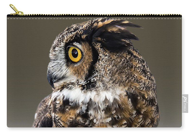 2d Carry-all Pouch featuring the photograph Great Horned Owl by Brian Wallace