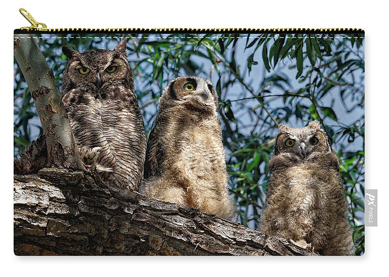 Great Horned Owl Carry-all Pouch featuring the photograph Great Horned Owl Family by Kathleen Bishop