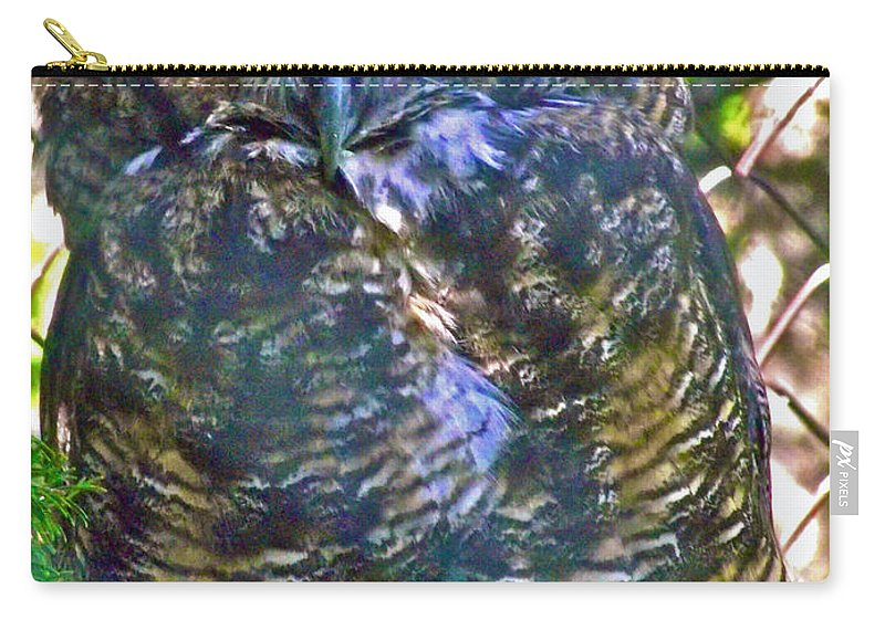 Great Horned Owl In Salmonier Nature Park Carry-all Pouch featuring the photograph Great Horned Owl In Salmonier Nature Park-nl by Ruth Hager