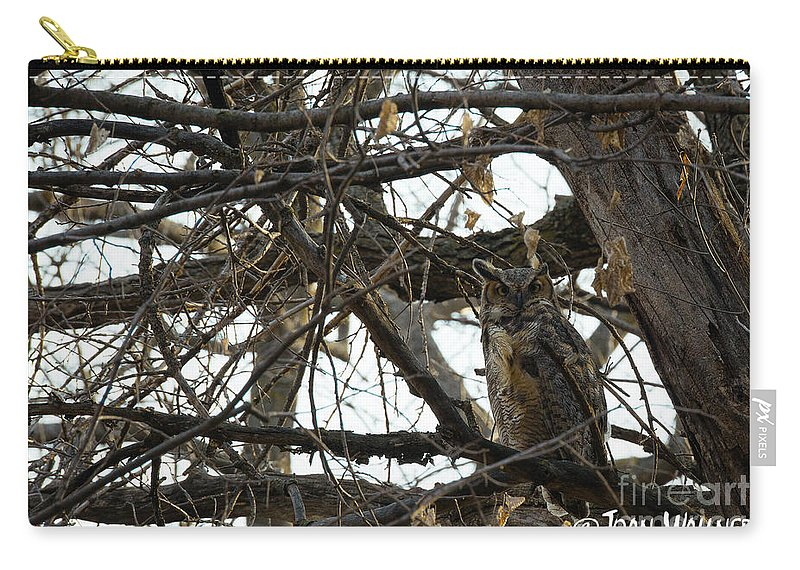 Great Horned Owl Carry-all Pouch featuring the photograph Great Horned Owl by Joan Wallner