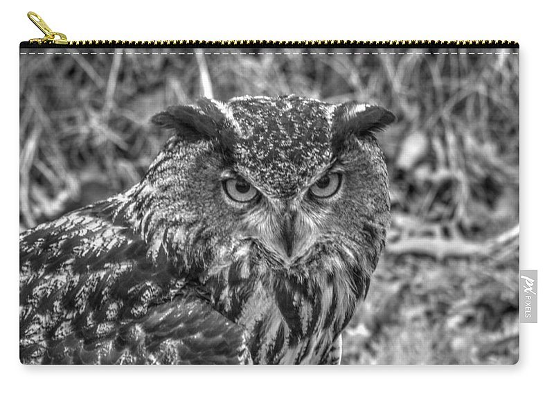 Great Horned Owl Carry-all Pouch featuring the photograph Great Horned Owl V7 by John Straton