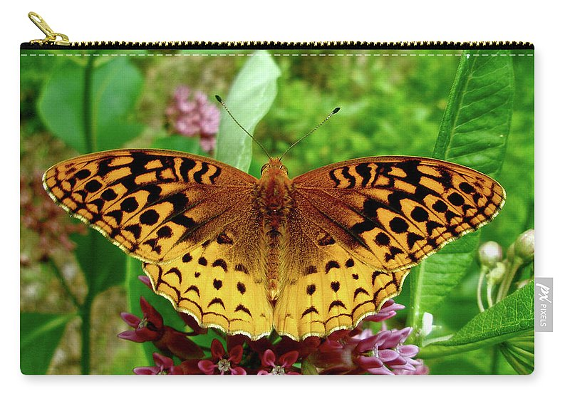 Butterfly Carry-all Pouch featuring the photograph Great Spangled Fritillary Butterfly by Mother Nature