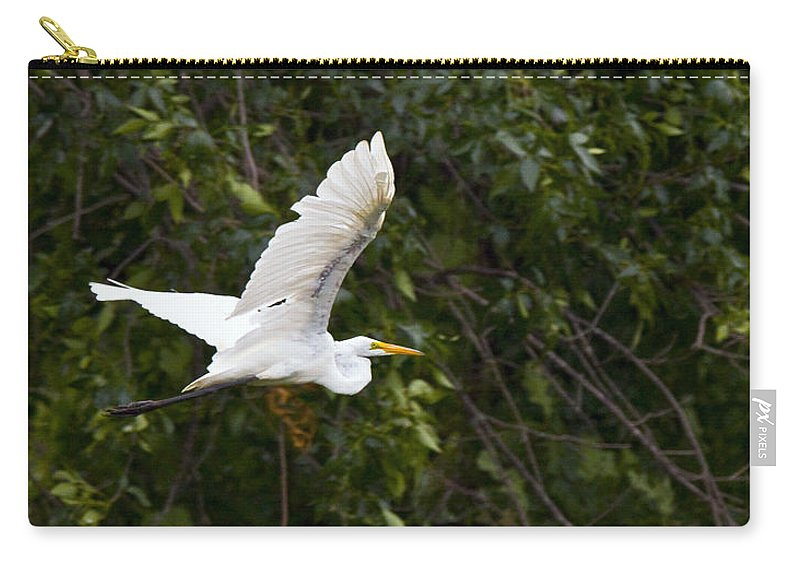 Great Blue Heron Photographs Carry-all Pouch featuring the photograph Great White Egret Flying 1 by Vernis Maxwell