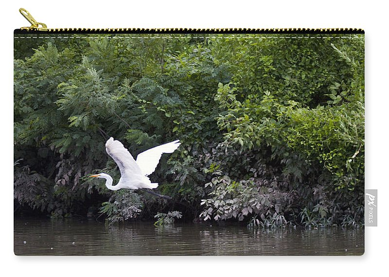 Great Blue Heron Photographs Carry-all Pouch featuring the photograph Great White Egret Flying 3 by Vernis Maxwell