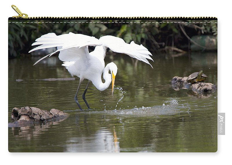 Carry-all Pouch featuring the photograph Great White Egret Wingspan And Turtles by Vernis Maxwell