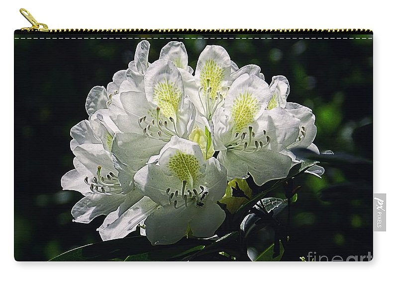 White Carry-all Pouch featuring the photograph Great White Rhododendron by Sharon Woerner