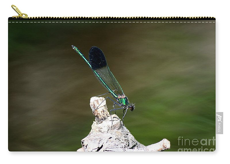 Damselfly Carry-all Pouch featuring the photograph Green Damselfly by Neal Eslinger
