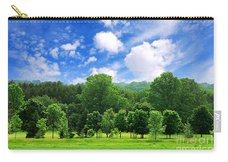 Tree Carry-all Pouch featuring the photograph Green Forest by Elena Elisseeva