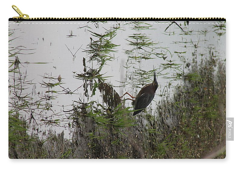 Green Heron Carry-all Pouch featuring the photograph Green Heron At The Pond by Wayne Williams