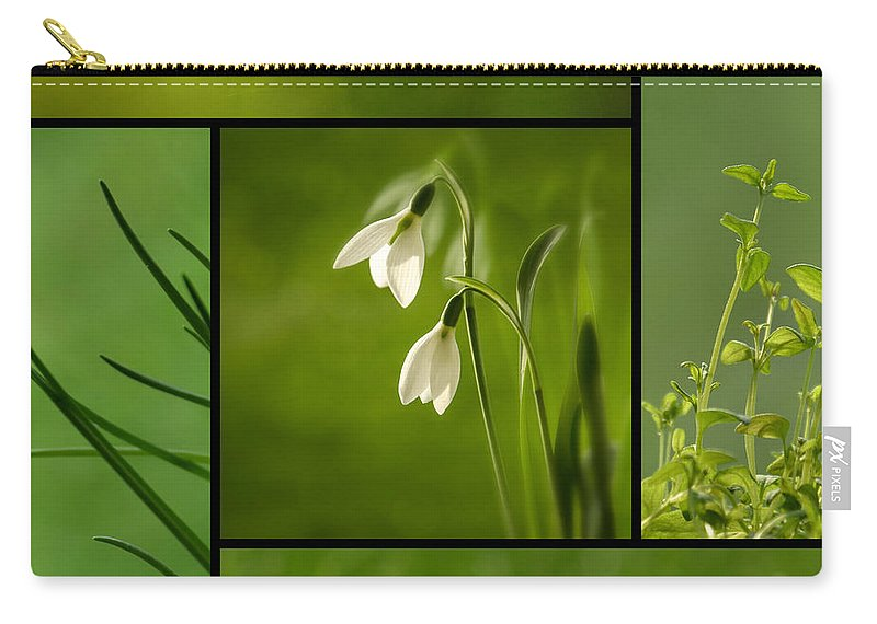 Organic Carry-all Pouch featuring the photograph Green by TouTouke A Y