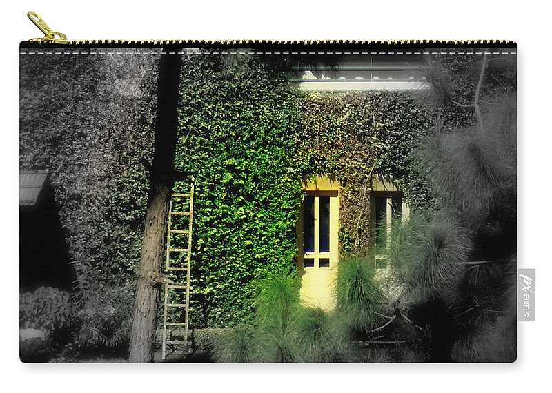Wallpaper Buy Art Print Phone Case T-shirt Beautiful Duvet Case Pillow Tote Bags Shower Curtain Greeting Cards Mobile Phone Apple Android Nature Nature Green Leaf Photography Salman Ravish Khan Carry-all Pouch featuring the photograph Green Window by Salman Ravish